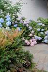 Georgetown garden detail