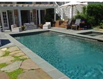 Pool Planting 3